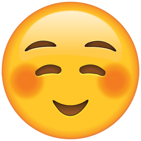 download shyly smiling face emoji Icon