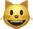 Download Smiling Cat Emoji face [Iphone IOS Emojis in PNG]