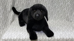 Stuffed Black Labrador Retriever