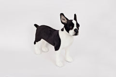 Stuffed Boston Terrier