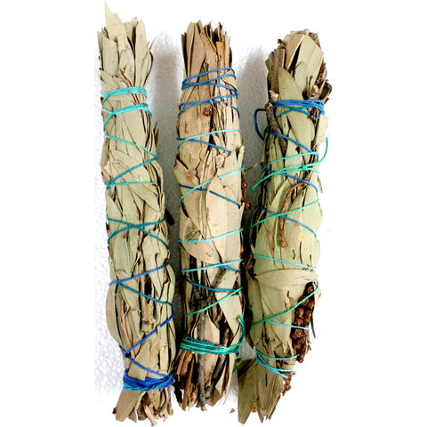 Coastal Swap Smudge Stick