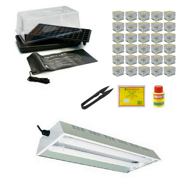 Complete Propagation Kit - PL Fluorescent - The Hippie House