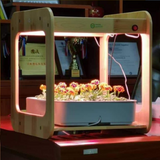 Wooden Kitchen Smart Garden With LED Grow Light