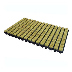 Grodan Rockwool Tray With 77 Propagation Cubes - The Hippie House