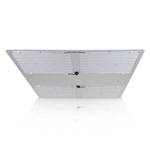 HGL 550 V2 LED Grow Light - The Hippie House