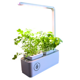 Indoor Smart Garden For Kitchens