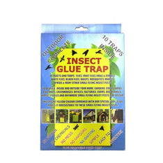 Insect Glue Traps - The Hippie House