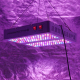 2 Viparspectra V900 - 900 Watt LED Grow Lights - The Hippie House