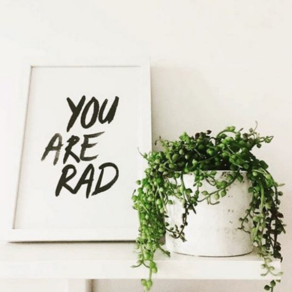 You Are Rad