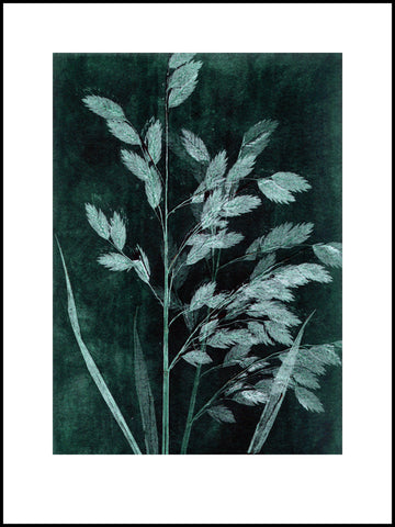 Petrol Grass Limited Edition Print 30 x 40 cm