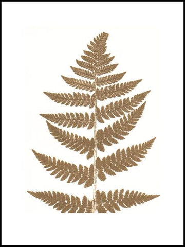 Gold Fern Limited Edition Print - 30cm x 40cm