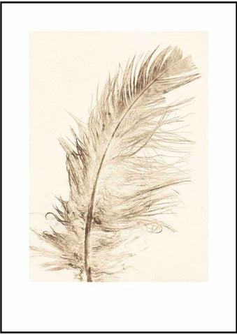Gold Feather Limited Edition Print
