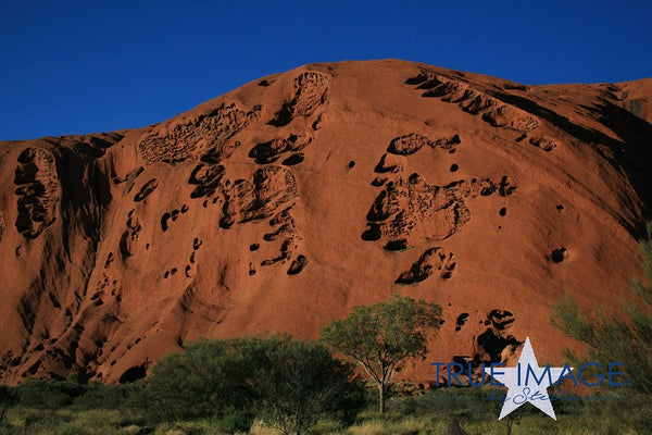 Uluru, Ayers Rock in the sun - Uluru Kata Tjuta National Park, Northern Territory, Australia