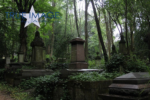 Old graveyard after rain - Highgate Cemetery, London, England, United Kingdom