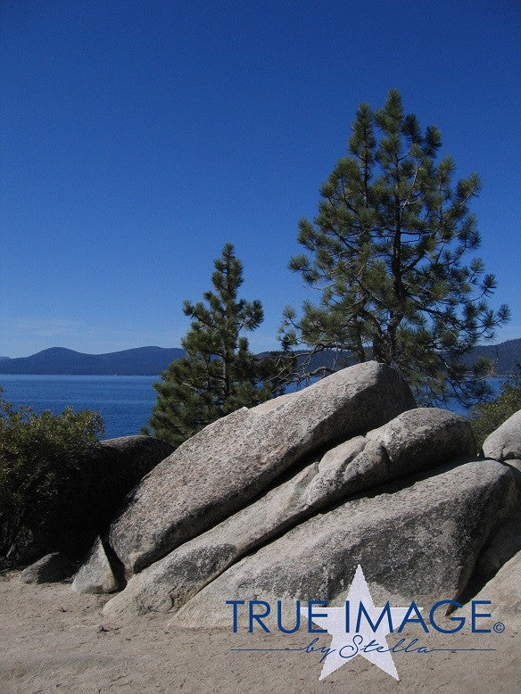 Trees and rocks by the lake - Lake Tahoe, Nevada, USA