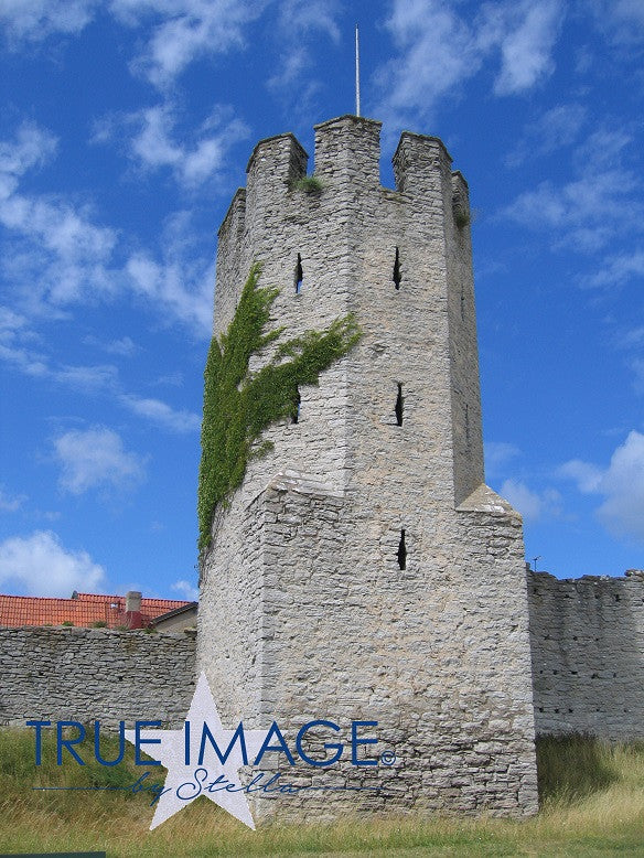 The Medieval Town Wall 4 - Visby, Sweden