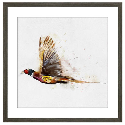 FLYING PHEASANT FRAMED PICTURE 50X50CM Click N Collect