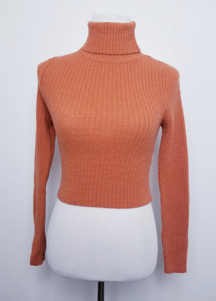 Semi Crop Turtleneck