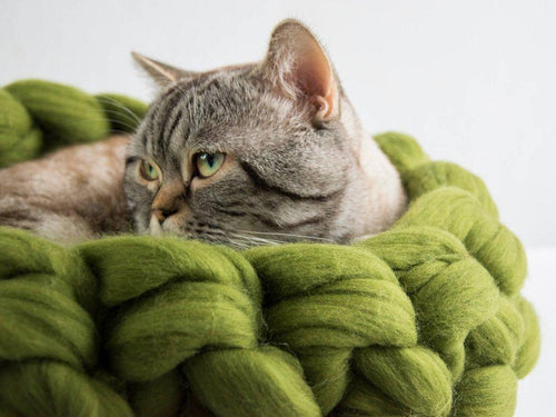 CHUNKY apple green round felted wool cat bed, cozy pet furniture