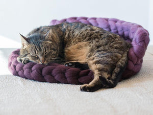 Cat's mat with back support CHUNKY Purple/Gray handmade from pure wool BureBure
