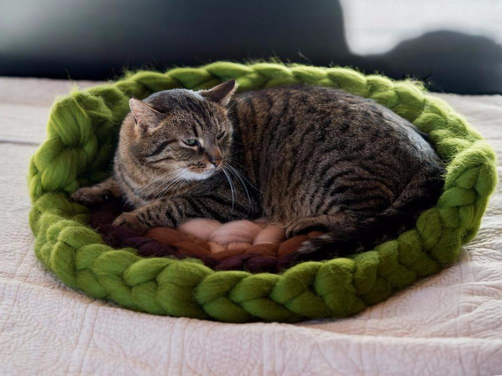 Cat mat with back support CHUNKY Green/Brown