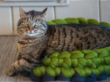 Load image into Gallery viewer, Chunky grren grey merino cat cot round bed for your beloved cat, hand felted, pure wool