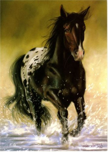 Western Home Decor Blank Note Card Matching Envelope Black Appaloosa Horse