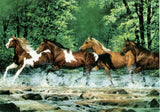 Western Home Decor Blank Note Card Western Art Horse Spring Creek Running