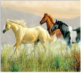 Western Home Decor New Blank Note Card Matching Envelope Horse Art