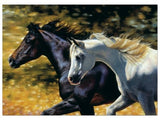 Western Horse Art Anniversary Card Matching Envelope