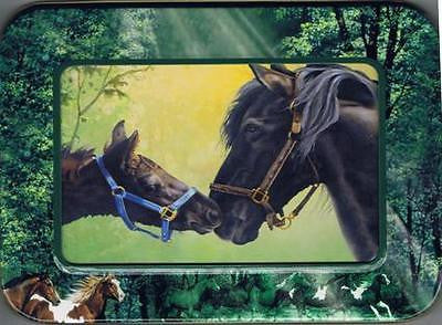 Western Decor Horse Art Box of Blank GREETING CARDS Green Note Card