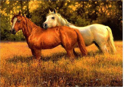 Western Home Decor Horse Note Card set Matching Envelope Western Horse Art