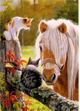 Horses Blank Note card made in USA envelope included