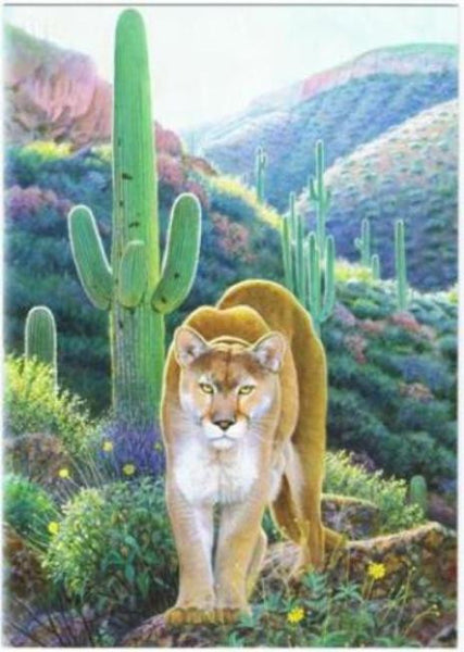 Mountain Lion Southwest Art  Blank Note Card