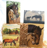 Tree Free Mare and Foal, 12 count Ecofriendly, Note-card assortment in a Collectible Photo Frame Tin Western Decor Horse Art Box of Blank GREETING CARDS Green Note Card