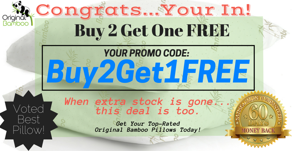Original Bamboo Pillow Buy 2 Get 1 Free