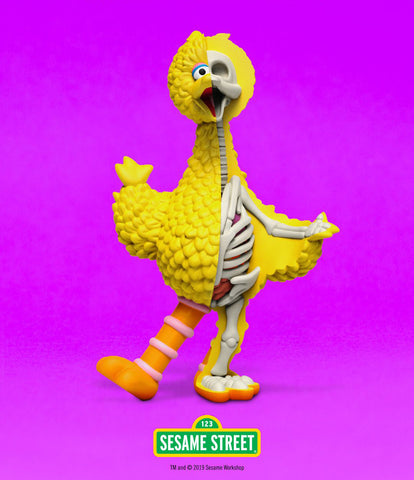 "XXRAY PLUS: 10"" Sesame Street Big Bird Limited Edition Figure (Signed)"