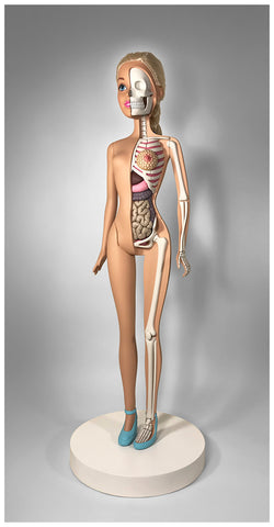 "Barbie Anatomy Sculpture (28"")"