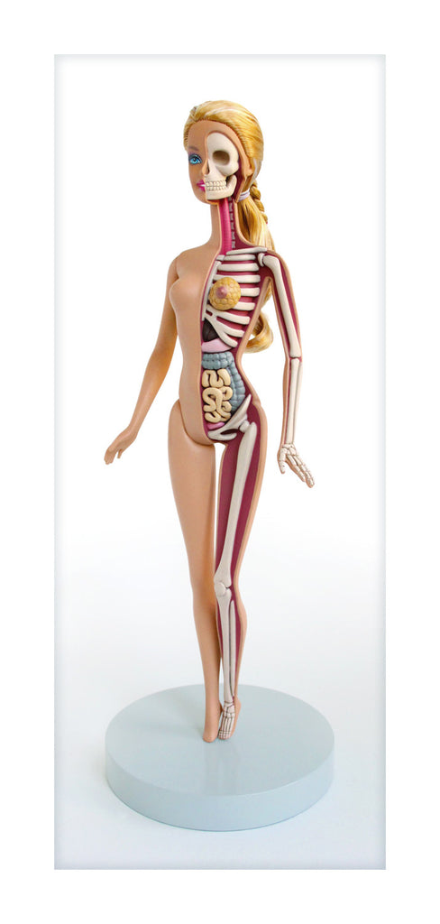 Doll Sculpt Dissection Print