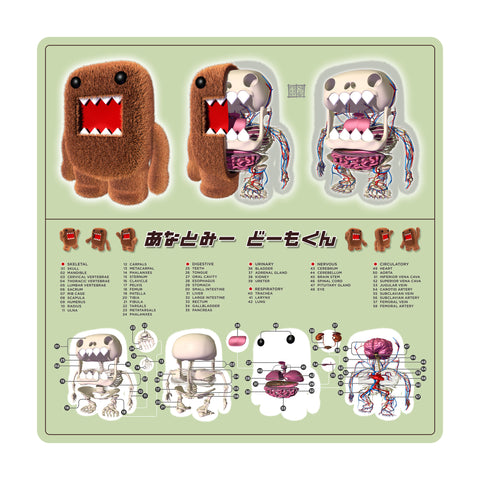 Domo Kun Anatomy Print (Limited Edition)