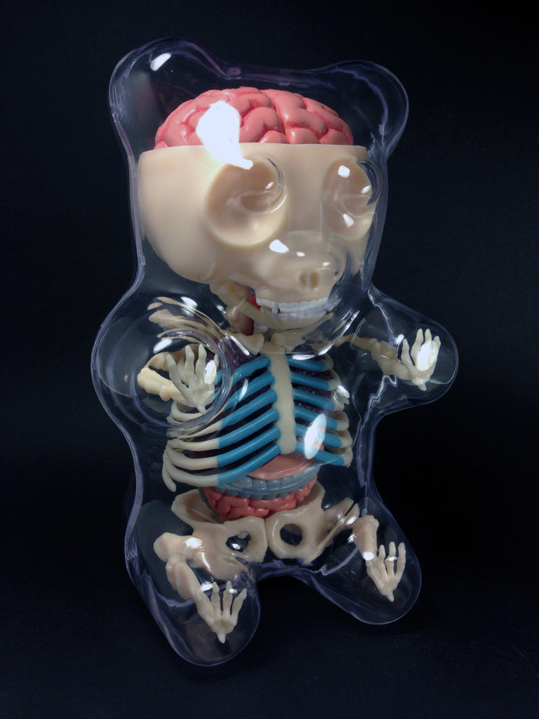 Gummi Bear Anatomy Model Now Available At Mightyjaxx