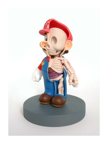 Plumber Sculpt Dissection Print