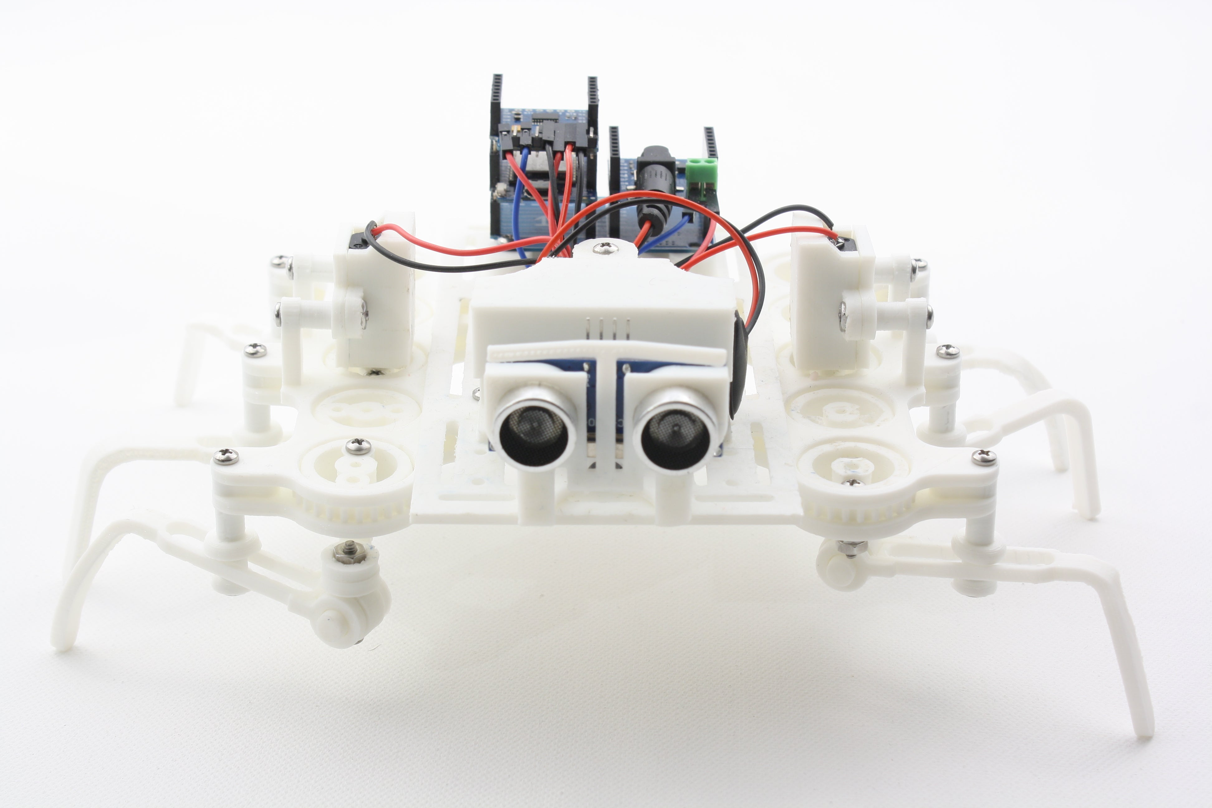 Beetle Robot Front View