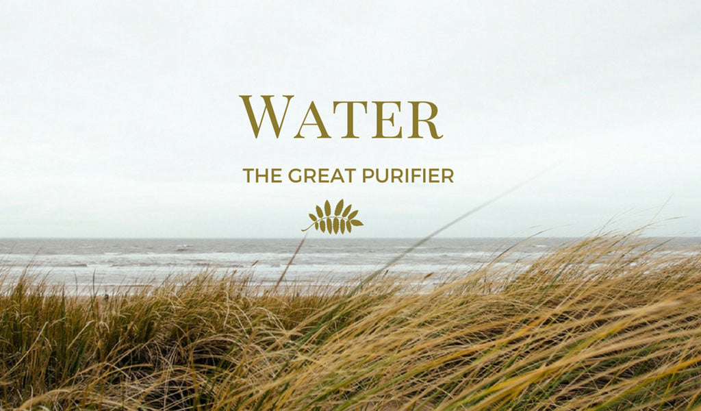 Water … The Great Purifier