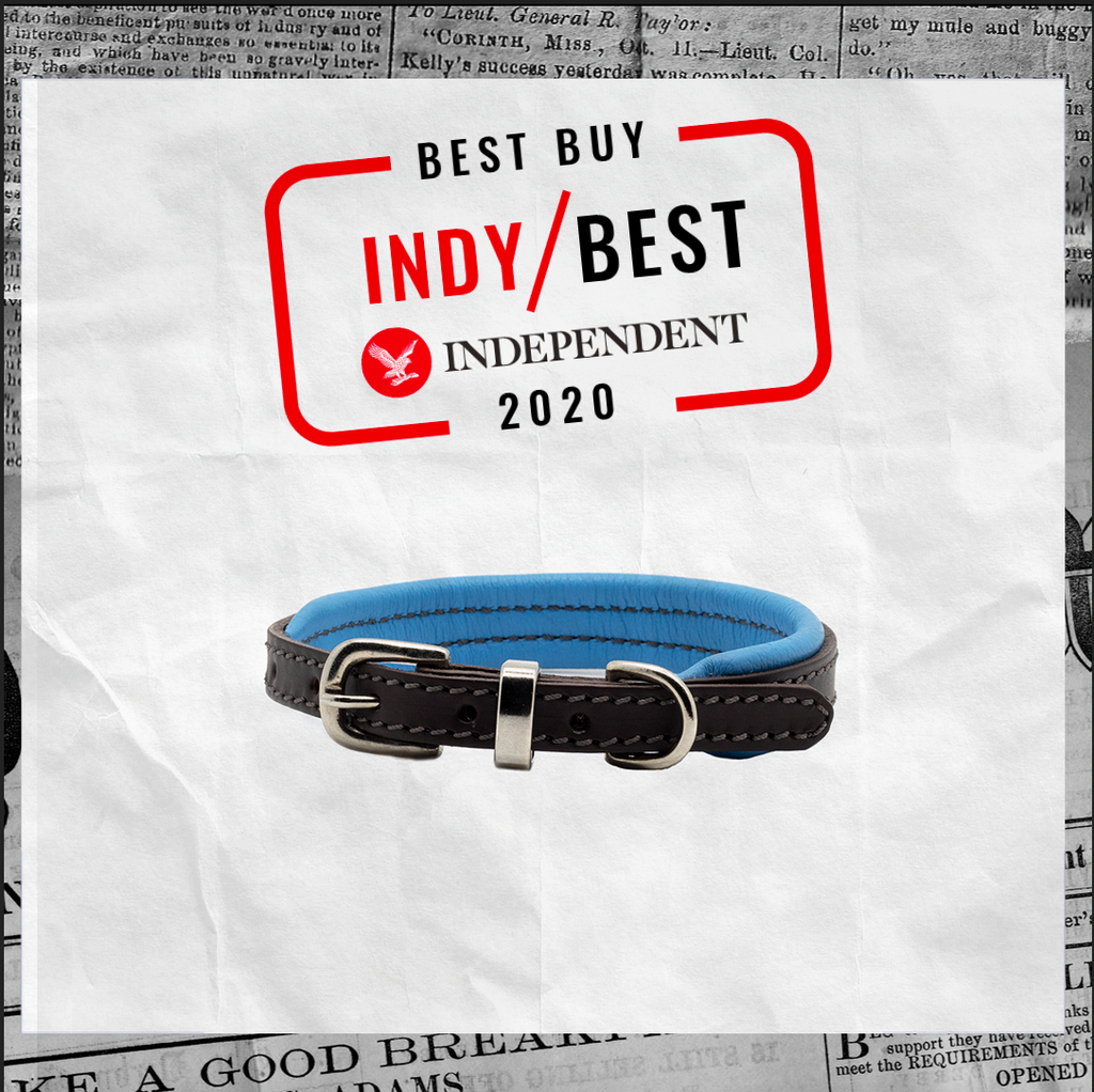 D&H awarded The Independent 'Indy Best Buy 2020'