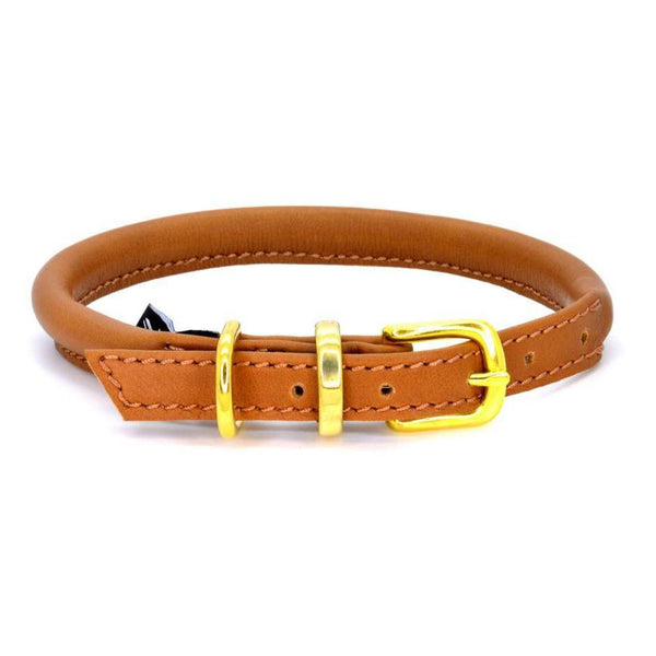D&H Rolled Leather Collar in House Colours