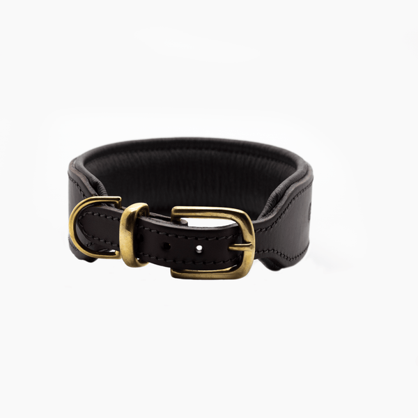 D&H Big Dog Padded leather dog Collar