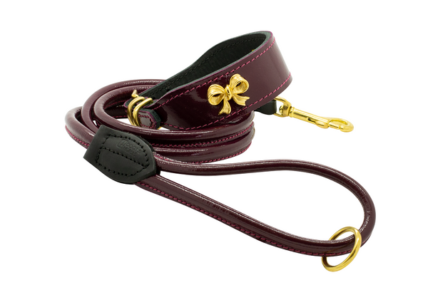 Gold Ribbon Dog Collar