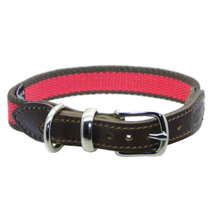 D&H STRIPED COTTON WEBBING DOG COLLAR