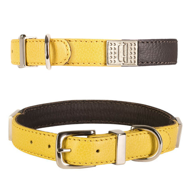 D&H DECODENT LEATHER COLLAR